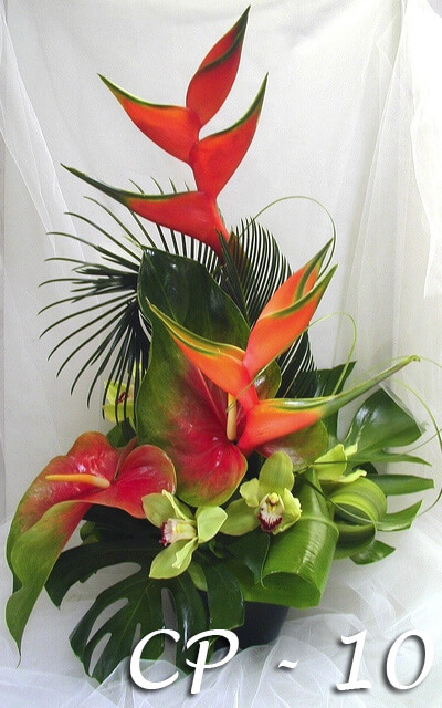 Tropical Heliconia, Ginger, Orchids