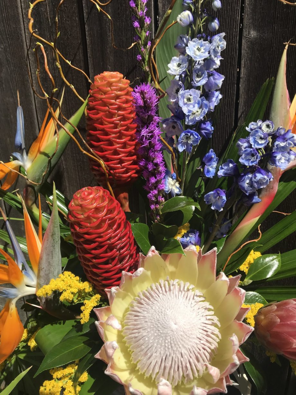 Bright Vibrant Flowers